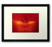 Inner Sanctum Framed Print