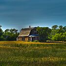 Little House in the Wildwood by PFrogg