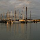 Hastings, Mornington Peninsula by SusanAdey