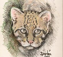 the ocelot by dincoscolluela