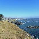 California Coast by LindaJBazor