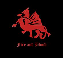 Fire and Blood by maddipetro