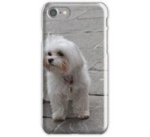 Cute Pet iPhone Case/Skin