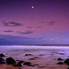 Violet  by Melanie Roberts