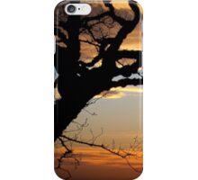 lone tree  iPhone Case/Skin