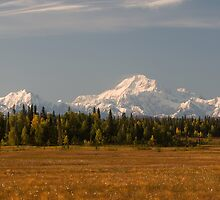 Denali ~ Raw, Wild and Unpredictable by Rick & Deb Larson