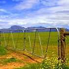 Gate view by Corien