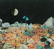 Nocturnal Landscape by Warwick Bullen