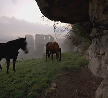 Horses and a Misty Abbey by Billlee