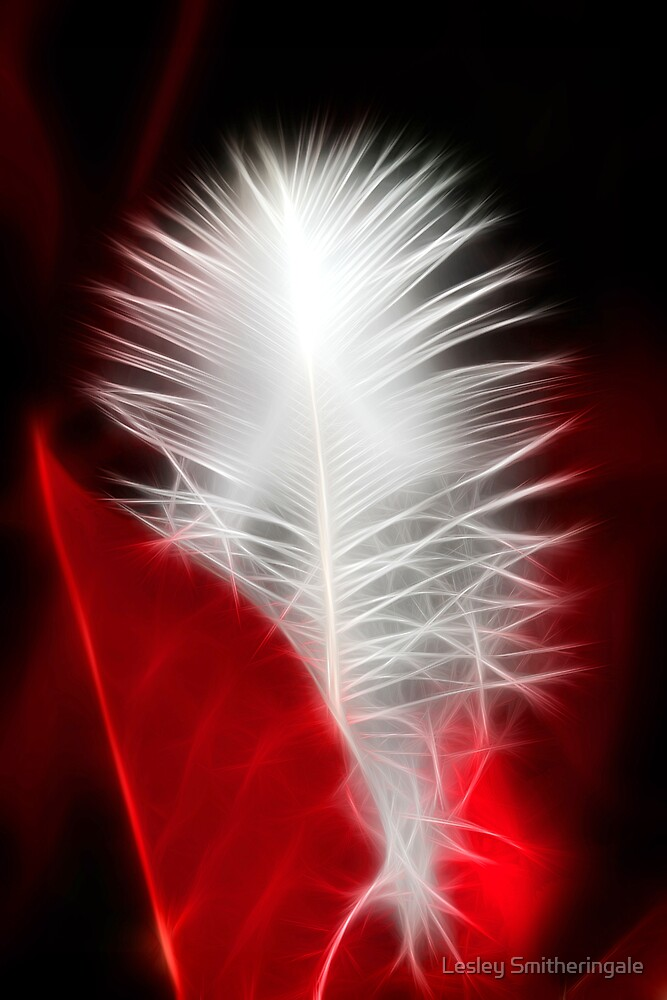 Neon Red Feather by Lesley Smitheringale