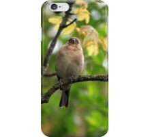 What are you looking at? iPhone Case/Skin
