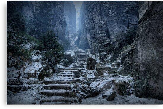 Emperor's Passage, Prachov Rocks by Stevacek