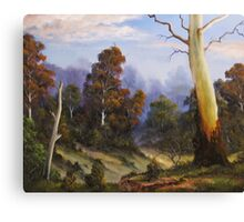 Country View Canvas Print