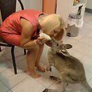 Baby Roo Having Breakfast by marieangel