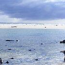 Tasmania's Falmouth  by gaylene
