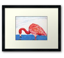 Fishing Pink Flamingo Framed Print