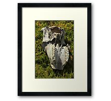 Jaw of a Cow Framed Print