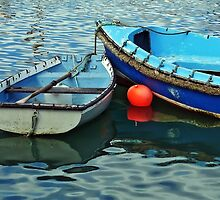 Old Skiffs ~ Lyme Regis Harbour by Susie Peek