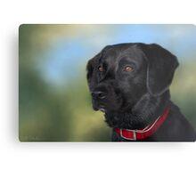 Black Lab - Dog Portrait Metal Print