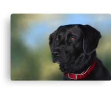 Black Lab - Dog Portrait Canvas Print