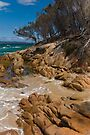 Freycinet Coastline by Werner Padarin
