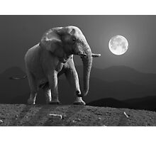 MOONRISE WITH ELEPHANT Photographic Print