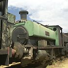 Row of old trains - Dorrigo Steam Railway & Museum by Bev Pascoe