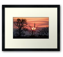 Sabi Sands Sunset Framed Print