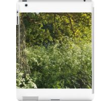 Clouds of Cow Parsley iPad Case/Skin