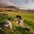 Ingleborough In The Yorkshire Dales by SteveMG