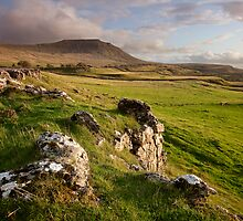 Ingleborough In The Yorkshire Dales by SteveMG