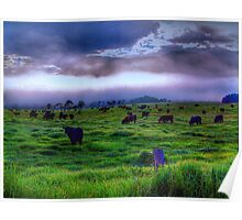 How Now Blue Cow  - Kangaroo Valley - The HDR Experience Poster