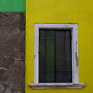 YELLOW GREEN by June Ferrol