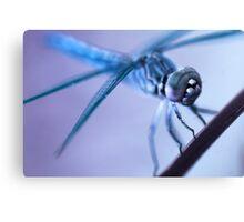 Alien Dragonfly Canvas Print