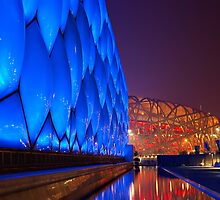 National Aquatics Centre & The Bird's Nest by Alphafish
