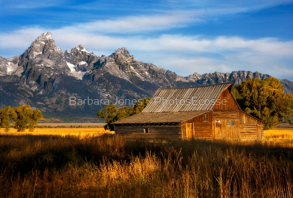 The Moulton Barn.  Mormon Row.  Jackson, Wyoming. USA. by photosecosse /barbara jones