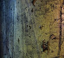 JC Abstract by Parapulse