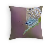 Female Common Blue Butterfly Throw Pillow