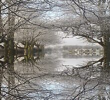 Refelections of Winter by Andy Smith
