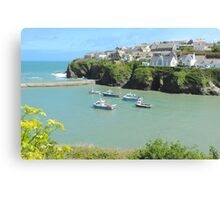 Port Isaac harbour, Cornwall Canvas Print