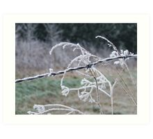 iced wire Art Print