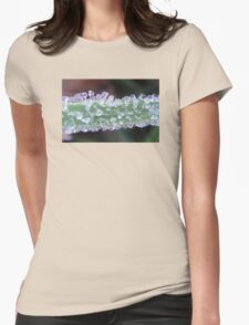 Beautiful frost on a green grass Womens Fitted T-Shirt