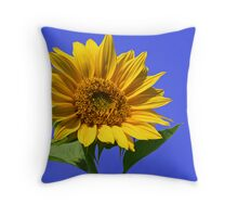 Sunny Skies Throw Pillow