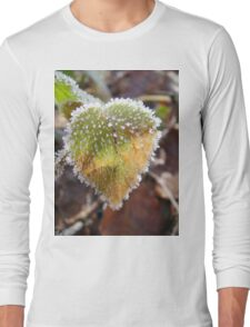 Colorful heartshaped leaf with frost Long Sleeve T-Shirt