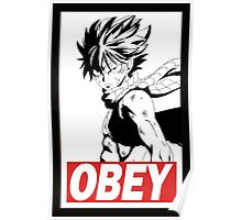 Natsu Obey Poster