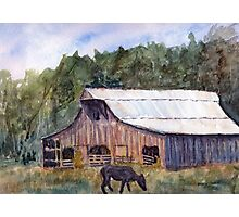 Spring On The Farm - Rural Watercolor Landscape Photographic Print