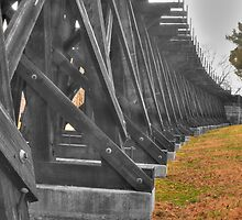 Tracks from History - Harpers Ferry by Rob Diffenderfer