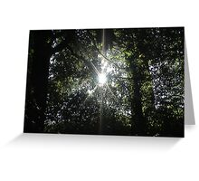 Walk into the light Greeting Card