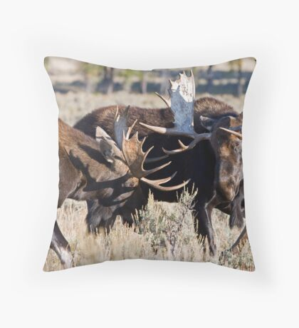Moose Bulls Sparring Throw Pillow