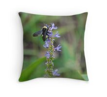 Bumblebee on Pickerel Weed I Throw Pillow